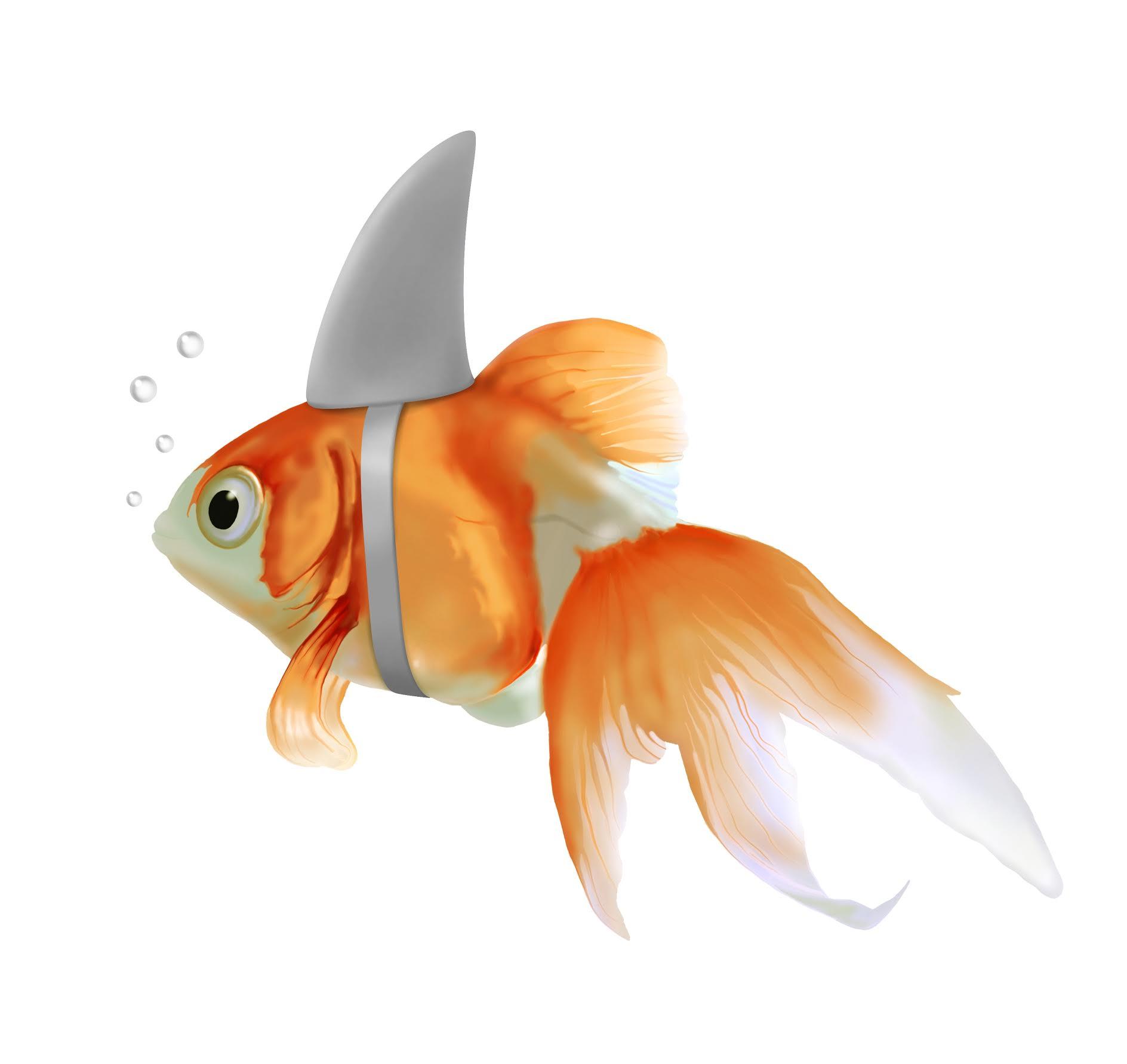 fish_shark.jpg